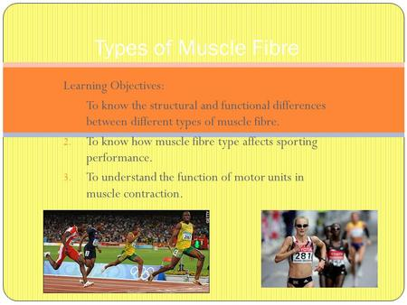 Types of Muscle Fibre Learning Objectives: