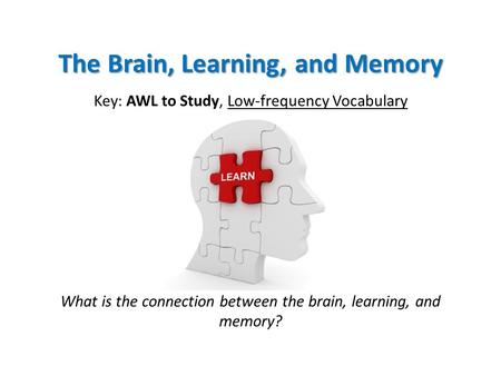 The Brain, Learning, and Memory Key: AWL to Study, Low-frequency Vocabulary What is the connection between the brain, learning, and memory?