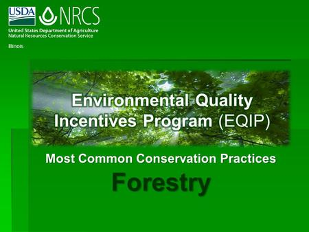 Most Common <strong>Conservation</strong> Practices Forestry Illinois.