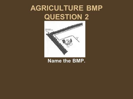 AGRICULTURE BMP QUESTION 2 Name the BMP.. AGRICULTURE BMP ANSWER 2 Name the BMP. Windbreak Row of trees Trees or shrubs that slow the wind.