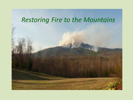 Restoring Fire to the Mountains. a presentation by… your National Forests in North Carolina.