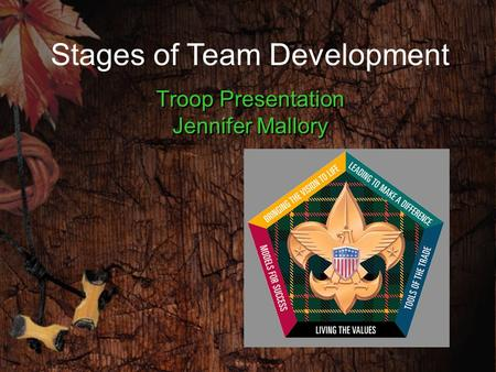 Stages of Team Development Troop Presentation Jennifer Mallory.