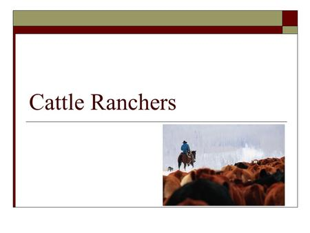 Cattle Ranchers. Texas Cattle  In the 1800's, ranchers in Texas raised and sold longhorn cattle.  Texas had a lot of cattle, but the market was not.