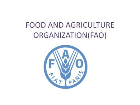 FOOD AND AGRICULTURE ORGANIZATION(FAO). WHAT IS IT? It leads international efforts to defeat hunger. FAO acts as a neutral forum where all nations meet.