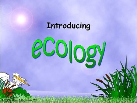 © 2006 Plano ISD, Plano, TX Introducing. © 2006 Plano ISD, Plano, TX the study of the relationships between biotic and abiotic factors in environments.