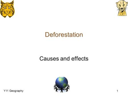 Deforestation Causes and effects.
