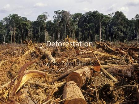 Deforestation By: Sean and Shanice. Definition Deforestation, Clearance or Clearing is the removal of a forest or stand of trees where the land is thereafter.
