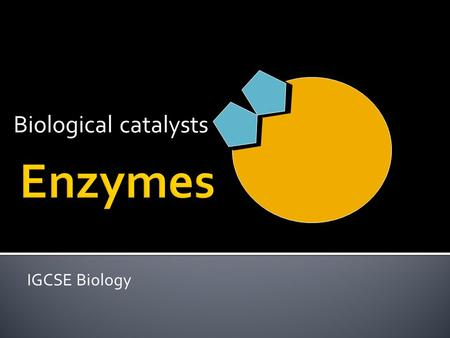 Biological catalysts Enzymes IGCSE Biology.