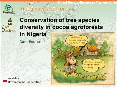 Trees outside of forests Conservation of tree species diversity in cocoa agroforests in Nigeria David Boshier.