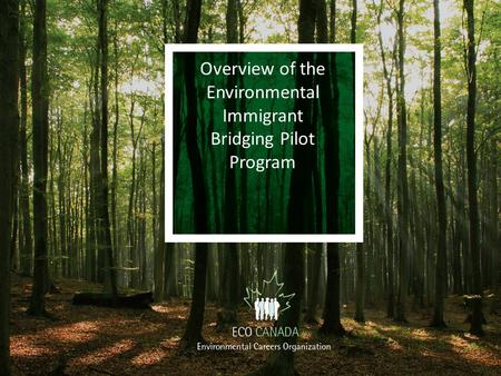 Overview of the Environmental Immigrant Bridging Pilot Program.