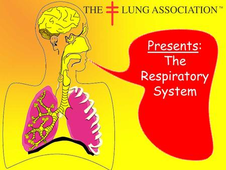 Presents: The Respiratory System The Lung Association of Saskatchewan © The respiratory system is what we use to breathe. It may seem simple to breathe,