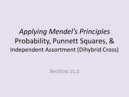Applying Mendel's Principles Probability, Punnett Squares, & Independent Assortment (Dihybrid Cross) Section 11.2.