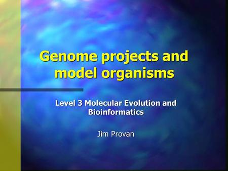 Genome projects and model organisms Level 3 Molecular Evolution and Bioinformatics Jim Provan.