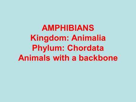 AMPHIBIANS Kingdom: Animalia Phylum: Chordata Animals with a backbone.