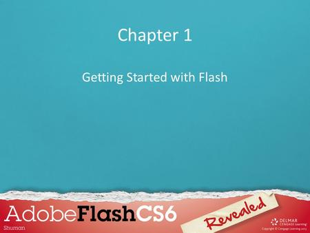 Getting Started with Flash
