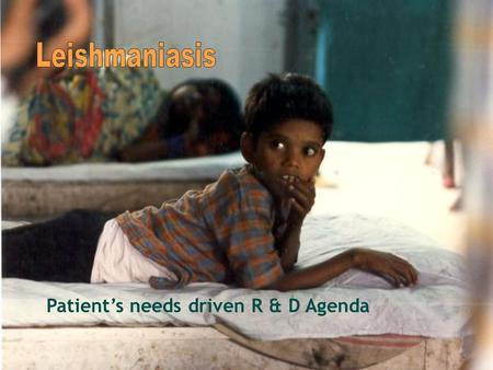 Patient's needs driven R & D Agenda. Increasing Devastation of Leishmaniasis 88 countries in tropical and temperate regions 72 of them developing or least.