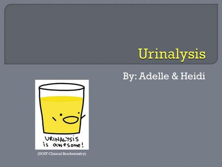 Urinalysis By: Adelle & Heidi Urinalysis by Adelle and Heidi