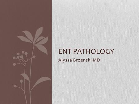 Alyssa Brzenski MD ENT PATHOLOGY. Case A 34 week old premature baby boy was born vaginally to a young mother with chorioamnioitis. At birth the baby was.