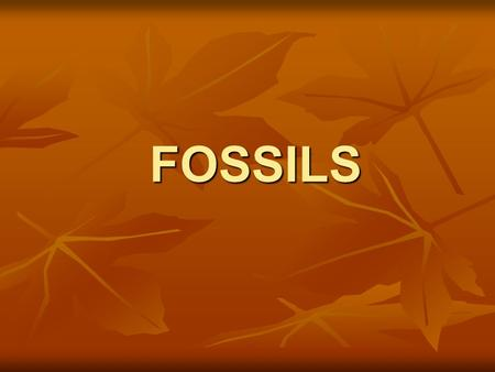 FOSSILS. FORMATION OF FOSSILS Fossils are preserved remains or traces of living things. Fossils are preserved remains or traces of living things.