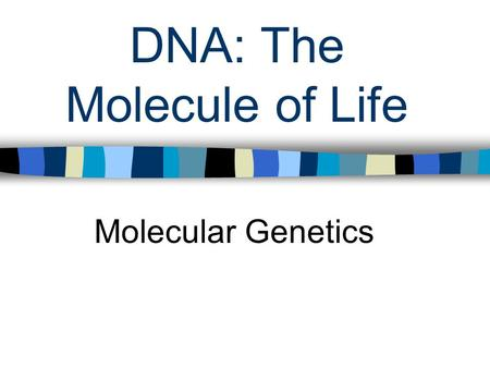 DNA: The Molecule of Life Molecular Genetics. DNA and RNA Genes are segments of DNA on a chromosome that code for specific traits DNA – nucleic <strong>acid</strong> called.