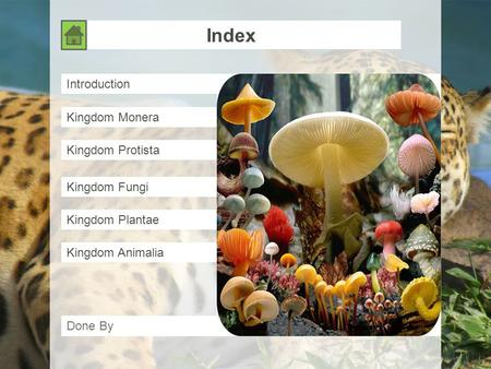 Index Introduction Kingdom Monera Kingdom Protista Kingdom Fungi