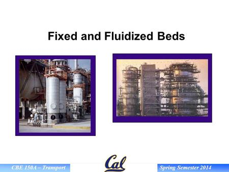 CBE 150A – Transport Spring Semester 2014 Fixed and Fluidized Beds.