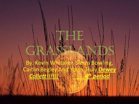 The Grasslands By: Kevin Whitaker, Sierra Bowling, Caitlin Begley And Yours Truly Dewey Collett!!!!!! 4 th period.
