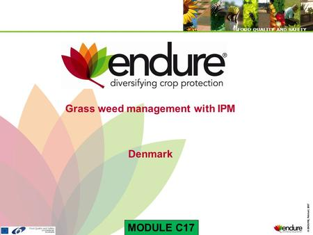 © ENDURE, February 2007 FOOD QUALITY AND SAFETY © ENDURE, February 2007 FOOD QUALITY AND SAFETY Grass weed management with IPM Denmark MODULE C17.