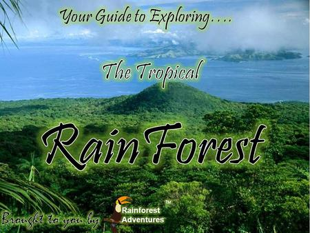 RainForest The Tropical Your Guide to Exploring…. Brought to you by: ™