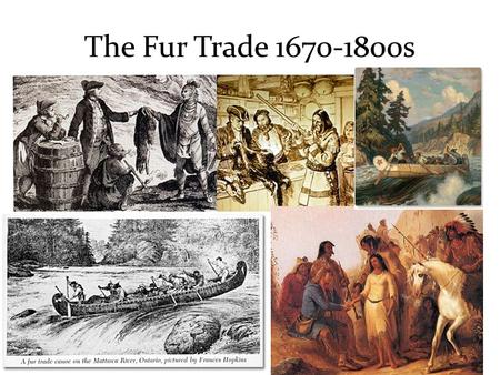 the history and growth of the canadian fur trade Overall, the french fur trade established the basic patterns for the fur trade in canada and much of the united states fur trade, history, indians 101.