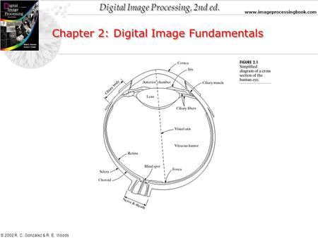 Digital Image Processing, 2nd ed. www.imageprocessingbook.com © 2002 R. C. Gonzalez & R. E. Woods Chapter 2: Digital Image Fundamentals.