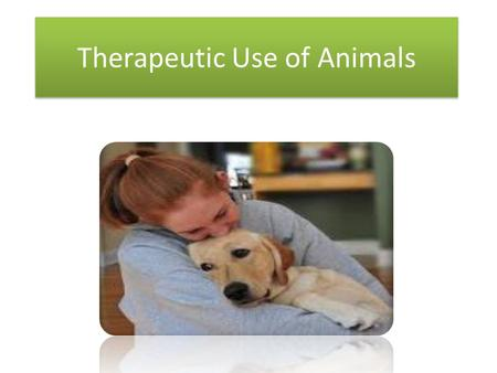 Therapeutic Use of Animals. Service Dogs used for the following: 1.Guide - Visual 2.Hearing – trained to alert 1.Alert by touch and lead them to everyday.