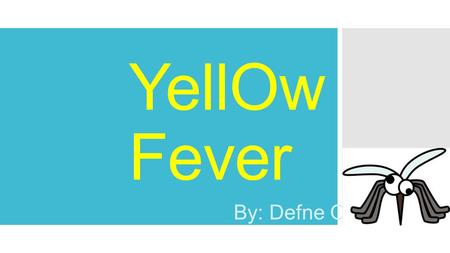 YellOw Fever By: Defne Onguc. What is Yellow Fever?  Yellow fever, also known as Black Vomit, Yellow Jack or An American Plague, is a deadly viral infection.