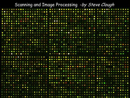 Scanning and Image Processing -by Steve Clough. GSI Lumonics cDNA microarrays use two dyes with well separated emission spectra such as Cy3 and Cy5 to.