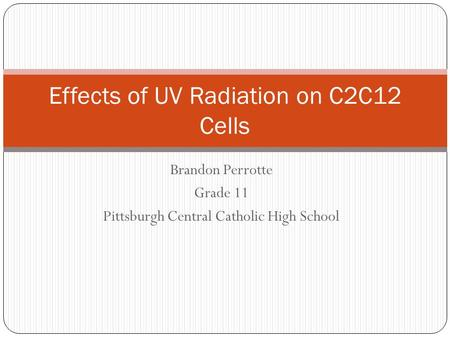 Brandon Perrotte Grade 11 Pittsburgh Central Catholic High School Effects of UV Radiation on C2C12 Cells.