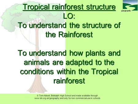  Tom Abbott, Biddulph High School and made available through www.sln.org.uk/geography and only for non commercial use in schools Tropical rainforest.
