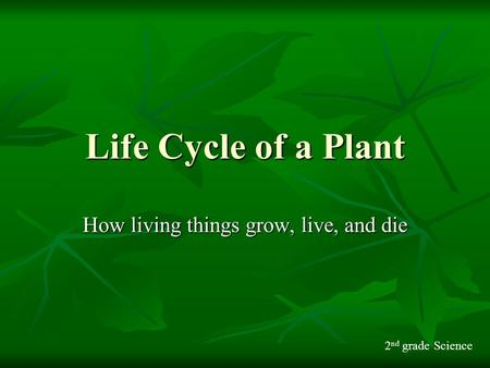 How living things grow, live, and die