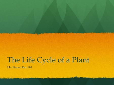 The Life Cycle of a Plant Ms. Finney Rm. 204. Life Cycle of a Plant Video  life-cycle.html
