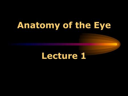 Anatomy of the Eye Lecture 1 Anatomy of the Eye 1. *The conjunctiva is a clear membrane covering the white of the eye (sclera). 2. *The sclera is the.