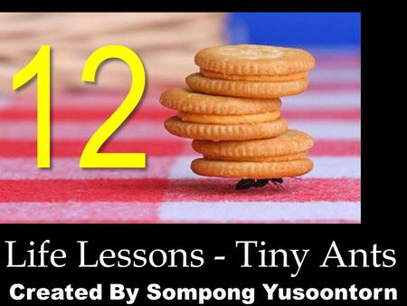 12 Life Lessons - Tiny Ants Created By Sompong Yusoontorn.