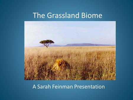 The Grassland Biome A Sarah Feinman Presentation.