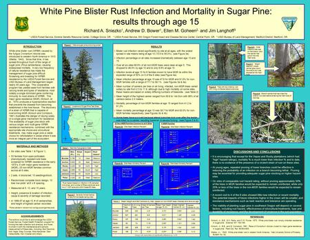 White Pine Blister Rust Infection and Mortality in Sugar Pine: results through age 15 Richard A. Sniezko 1, Andrew D. Bower 1, Ellen M. Goheen 2, and Jim.