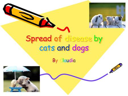 Spread of disease by cats and dogs Spread of disease by cats and dogs By Claudia.