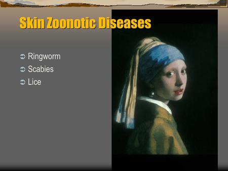 Skin Zoonotic Diseases  Ringworm  Scabies  Lice.