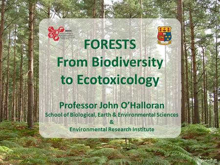 FORESTS From Biodiversity to Ecotoxicology Professor John O'Halloran School of Biological, Earth & Environmental Sciences & Environmental Research Institute.