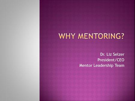 Dr. Liz Selzer President/CEO Mentor Leadership Team.