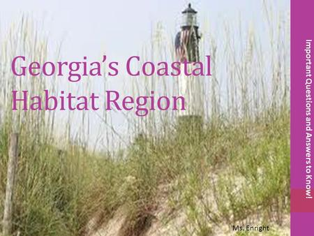 Georgia's Coastal Habitat Region Important Questions and Answers to Know! Ms. Enright.