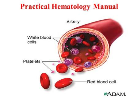 Practical Hematology Manual. Components of Normal Adult Blood.