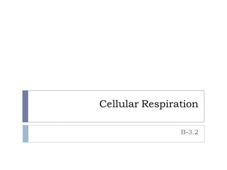 Cellular Respiration B-3.2. Cellular Respiration The ultimate goal of cellular respiration is to convert the chemical energy in nutrients to chemical.