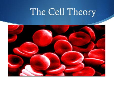 The Cell Theory. Some Random Cell Facts  The average human being is composed of around 100 Trillion individual cells!!!  It would take as many as 50.
